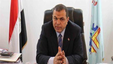 الدكتور محمد سعفان وزير القوى العاملة