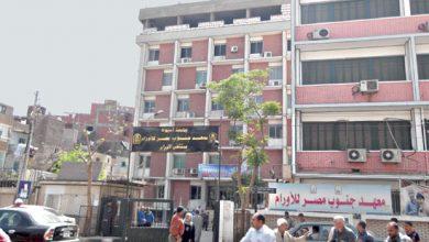 معهد جنوب مصر للأروام