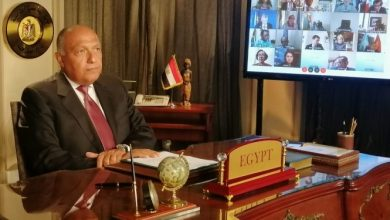 سامح شكري، وزير خارجية مصر
