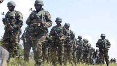 القوات النيجيرية وتطهير البلاد من الإرهاب