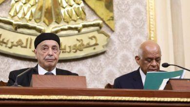 عقيلة صالح في البرلمان المصري