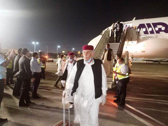 وفد القبائل الليبية