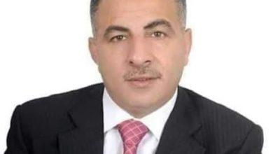 عمرو زايد