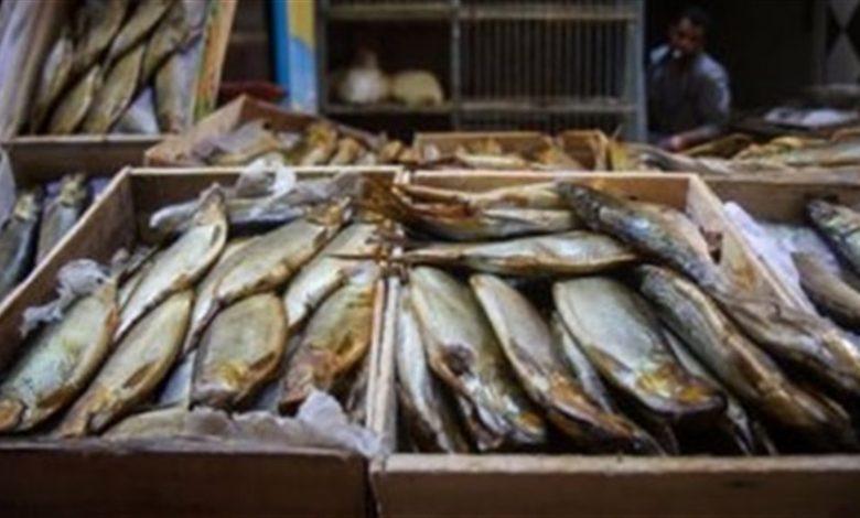أسماك مملحة غير صالحة للإستهلاك الآدمى