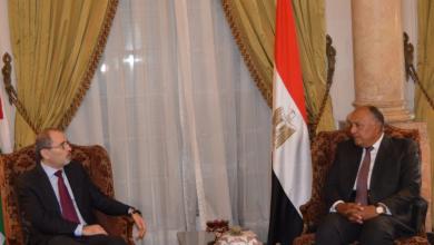 وزير الخارجية المصري والأردني