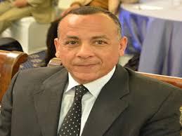 مصطفى وزيري الأمين العام للمجلس الأعلى للآثار