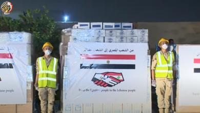 مساعدات الشعب المصري لـ«لبنان»