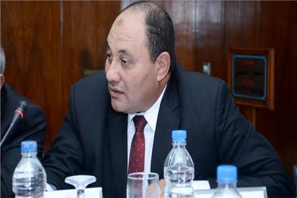 المهندس مصطفى الصياد نائب وزير الزراعة للثروة الحيوانية والسمكية والداجنة،