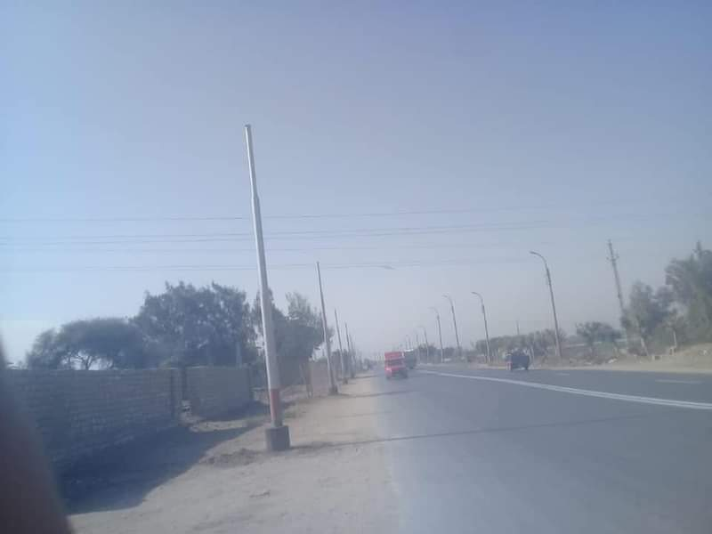 زرع اعمدة انارة باحدى قرى المنيا