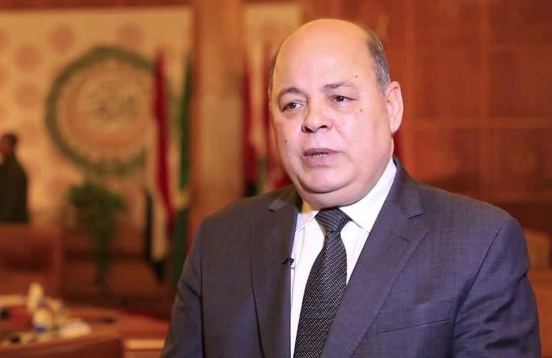 الدكتور محمد صابر عرب، وزير الثقافة الأسبق،