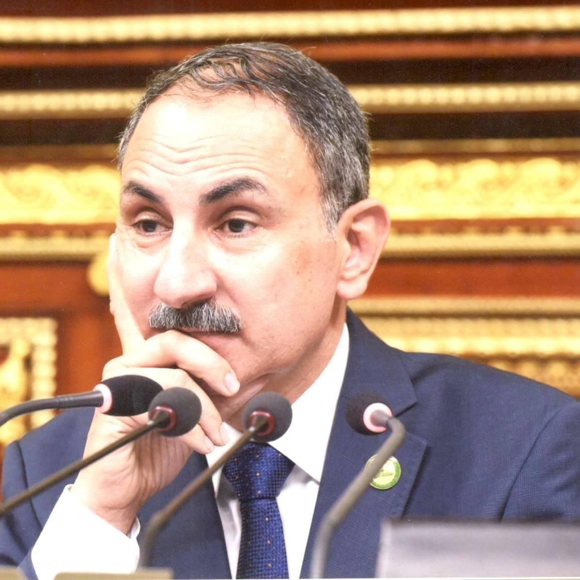 م مجدى ملك وكيل زراعة البرلمان