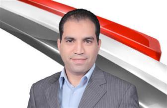 عمرو درويش عضو مجلس النواب