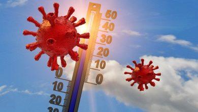 الحرارة وفيروس كورونا