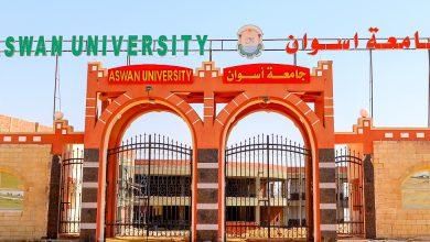 جامعة أسوان