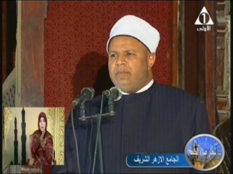 الدكتور محمد ابوزيد الأمير